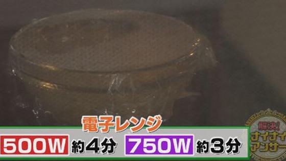 syouga02_1108